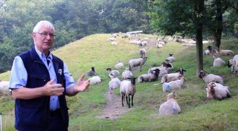Haren-Haren gaat langs Kymmelsberg, een hotspot van De Hondsrug UNESCO Global Geopark